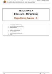 Fichier PDF 5ft1bjq