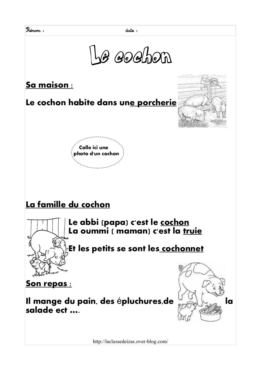 Aperçu du document cochon.pdf - page 2/3