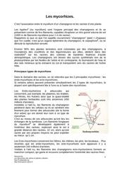 Fichier PDF iz5uerf
