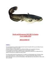 Fichier PDF 0a52c7o