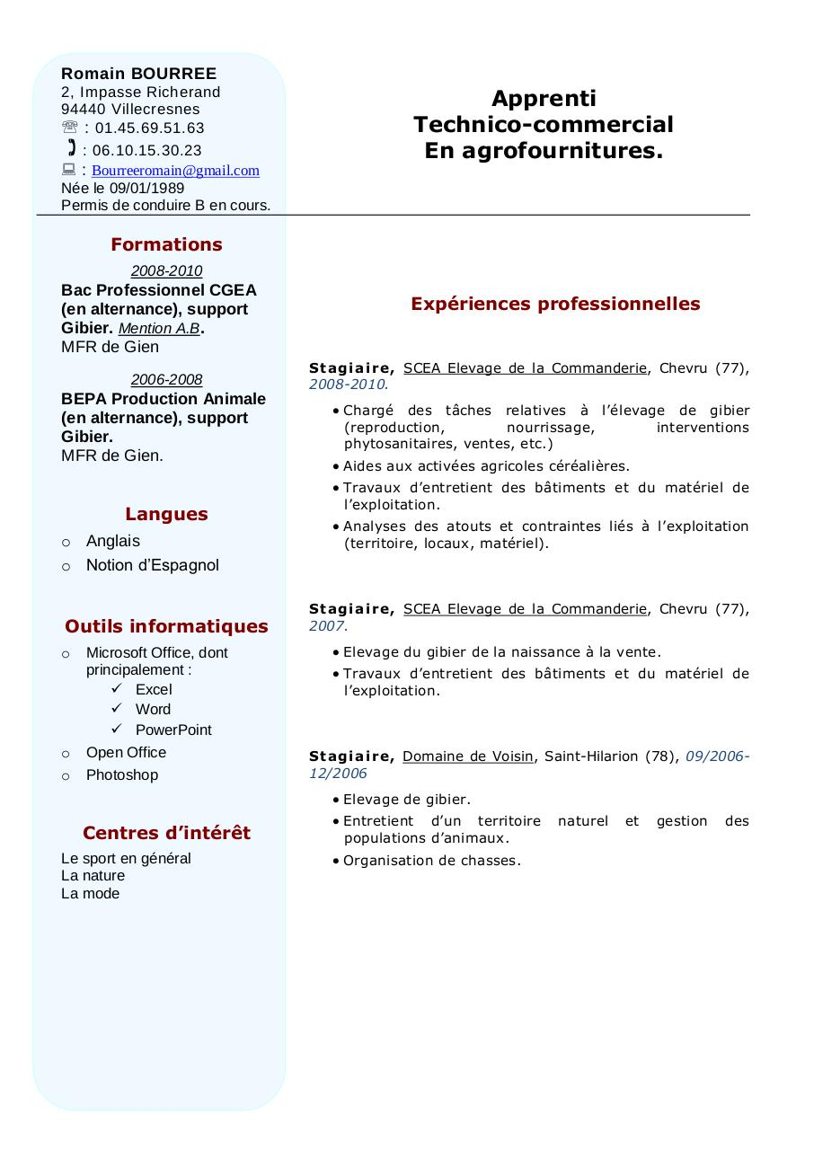 exemple cv technico commercial