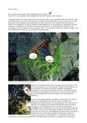 tr psilocybes culte de la nature