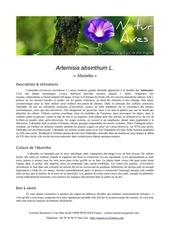 Fichier PDF artemisia absinthium