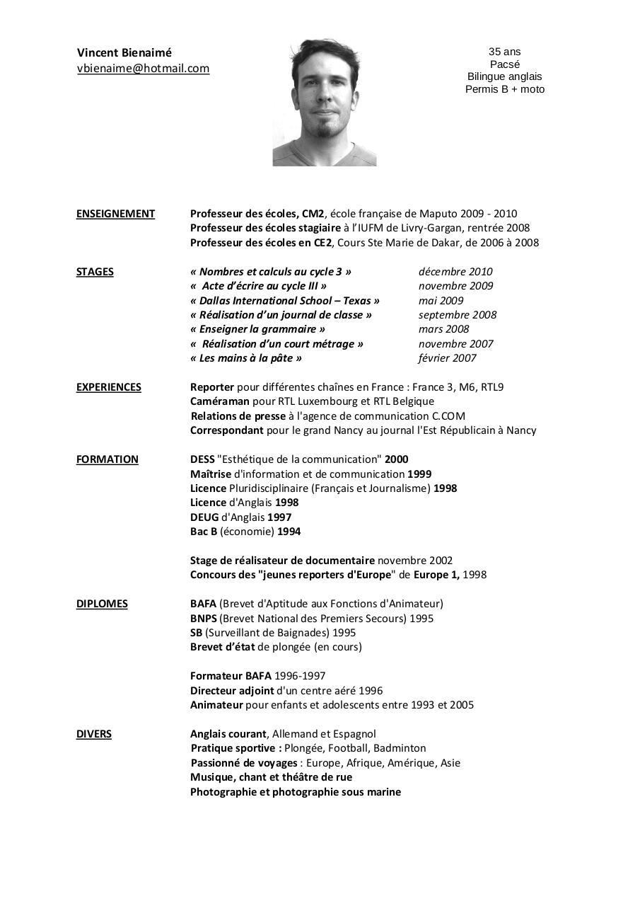 cv vincent 2010 pdf par vincent