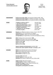 Fichier PDF cv vincent 2010