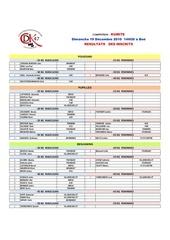 resultats kumite 19 dec 2010