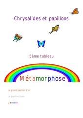 5 metamorphose