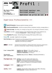 Fichier PDF cv valli j 1