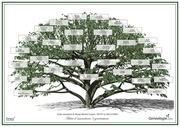arbre 5 generations