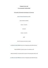 Fichier PDF perpignan centre ville