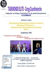 Fichier PDF stagecombat