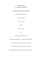 Fichier PDF perpignan centre villeok