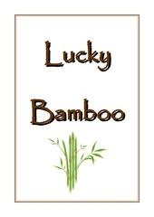 lucky bamboo book pdf