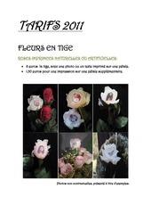 Fichier PDF tarifs 2011 1