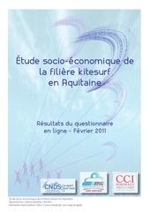bilan questionnaire en ligne etude socio economique du kitesurf en aquitaine