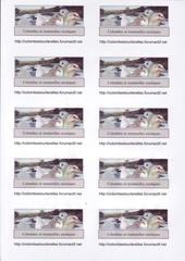 Fichier PDF carte forum0001