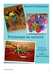 Fichier PDF bottes de rameaux printemps au naturel