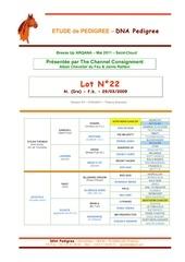 Fichier PDF dna hip22 v01
