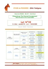 Fichier PDF dna hip22 v02