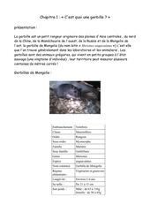 Fichier PDF gerbille