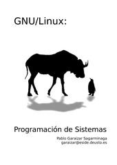 Fichier PDF programaciongnulinux