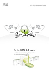 endian software ds en