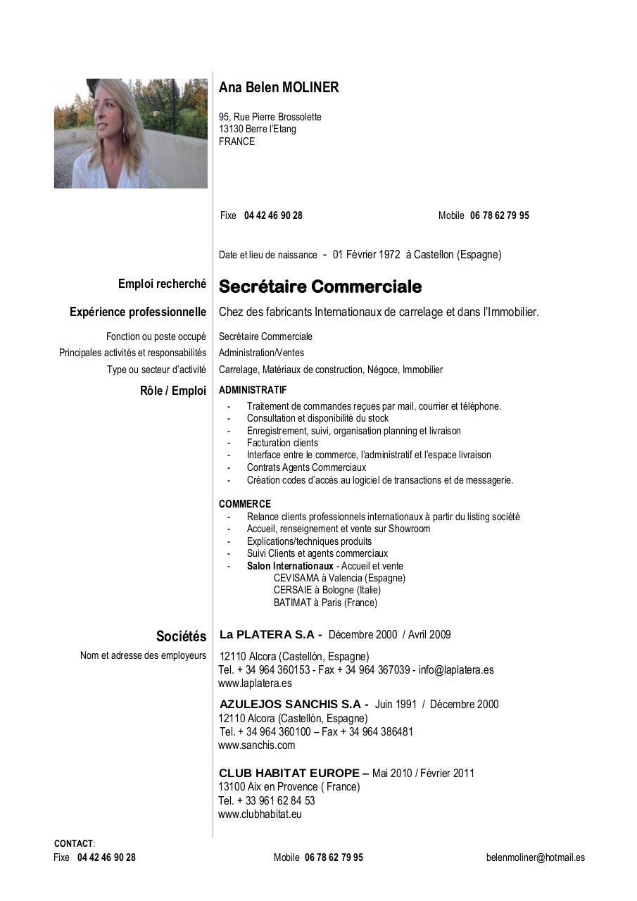 cv modele francai modifi 233 pdf par klaus fichier pdf