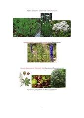 plantesrecopharma