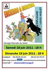 affiche encierro juin2011