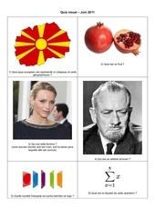 Fichier PDF quiz visuel