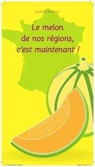 dp melon 2011