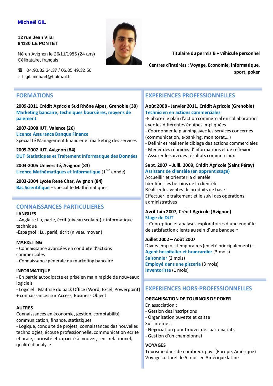 cv - micha u00ebl gil pdf par admin