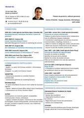 Fichier PDF cv michael gil