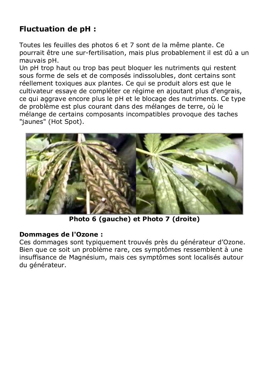 Aper u du fichier 12 culture du cannabis probl mes for Livre culture cannabis interieur pdf