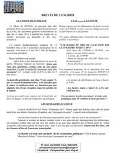Fichier PDF bulletin 3 comite de jumelage