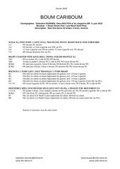 Fichier PDF boum cariboum