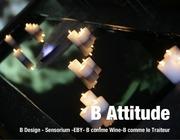 Fichier PDF book b attitude juillet 2011