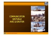 Fichier PDF la communication gestuelle