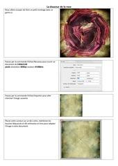 Fichier PDF la douceur de la rose