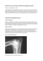 Dysplasie_Coude_Chien.pdf - page 3/7