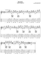 maximilien guitare