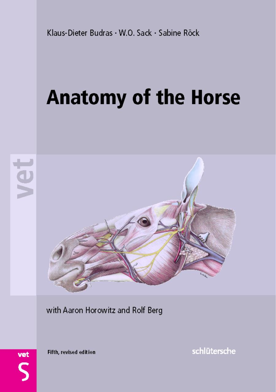 Anatomy_of_the_Horse.pdf - page 1/208