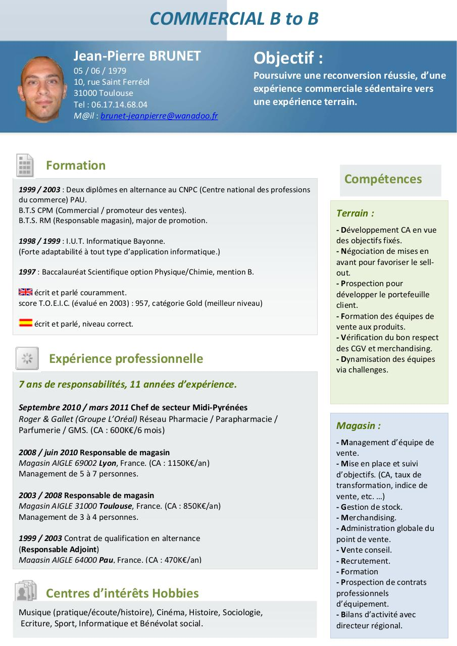 exemple cv commercial gms