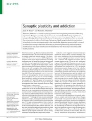 kauer malenka 2007 synaptic plasticity and addiction rev