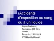 2 10 s1 les a e s version 2011