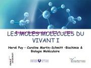 cours 1 ifsi 2010 les molecules du vivant