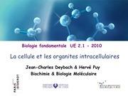 Fichier PDF cours ifsi 1 la cellule et les organites intracellulaires