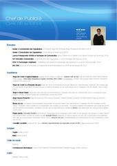Fichier PDF cv chefdepublicite2