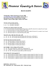 Fichier PDF bluelight