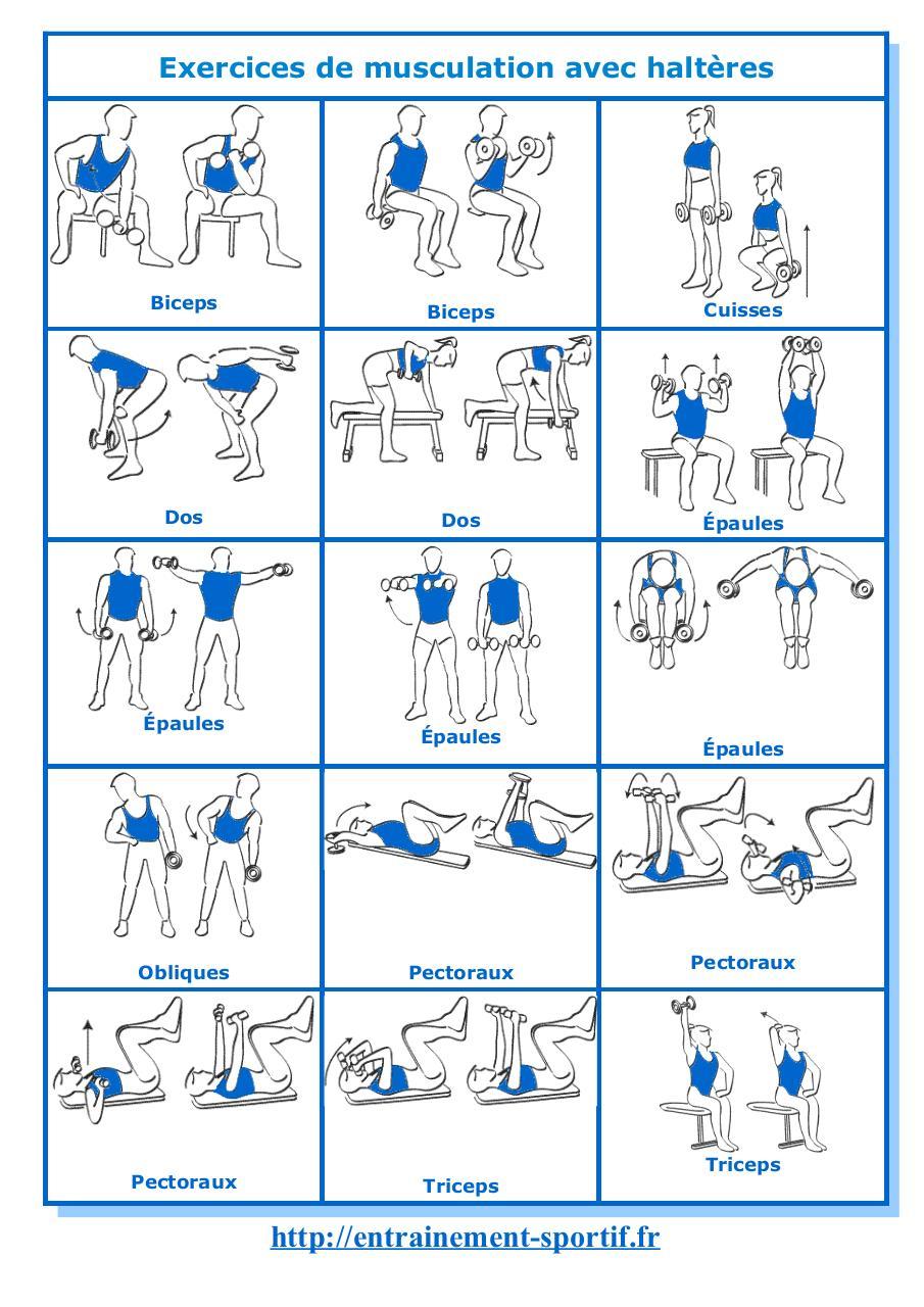 exercices de musculation avec halteres par bruno chauzi ...